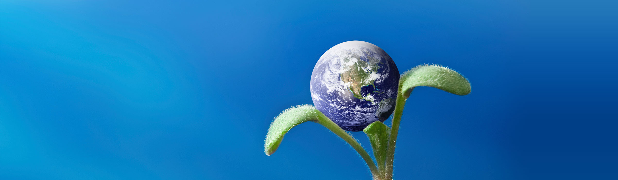 The Earth appearing from a distance behind a budding green plant, altogether seeming like a flower.