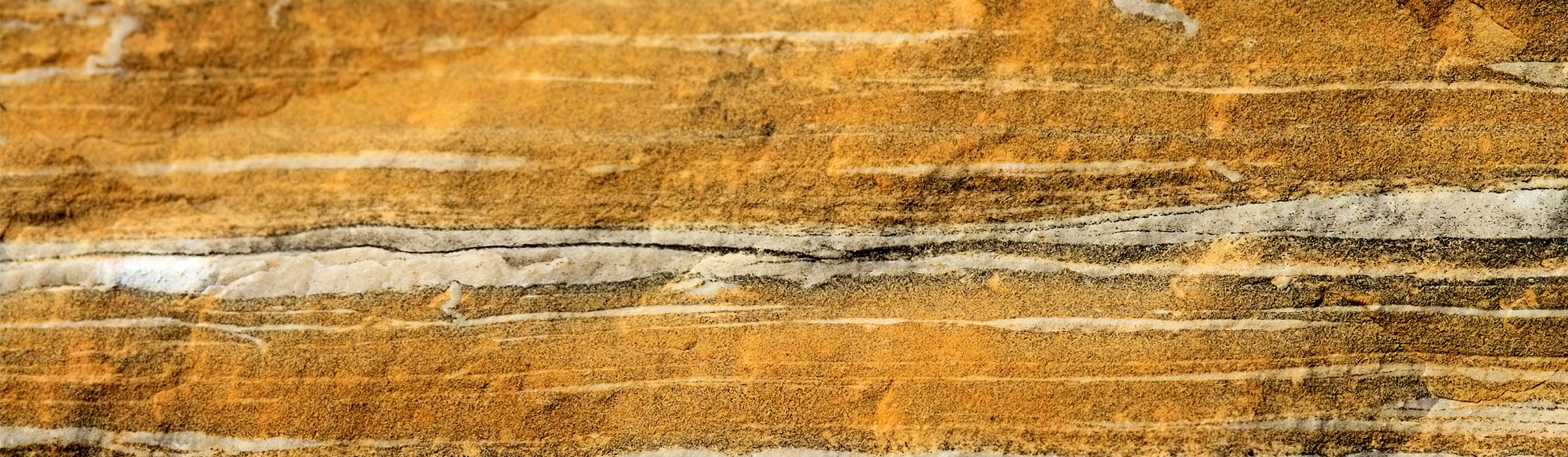 An orange, white, and black cross section of a stratum.
